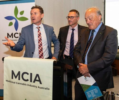 Andrew Laming, Richard Di Natale Leader of the Greens, Dr Mike Freelander